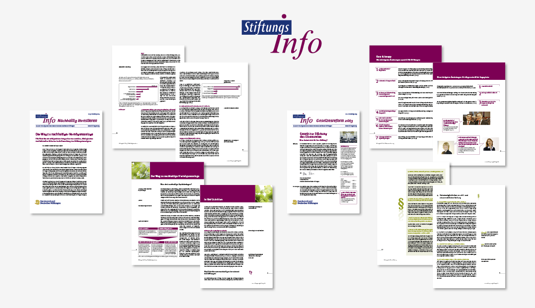 Stiftungs Info des bvds